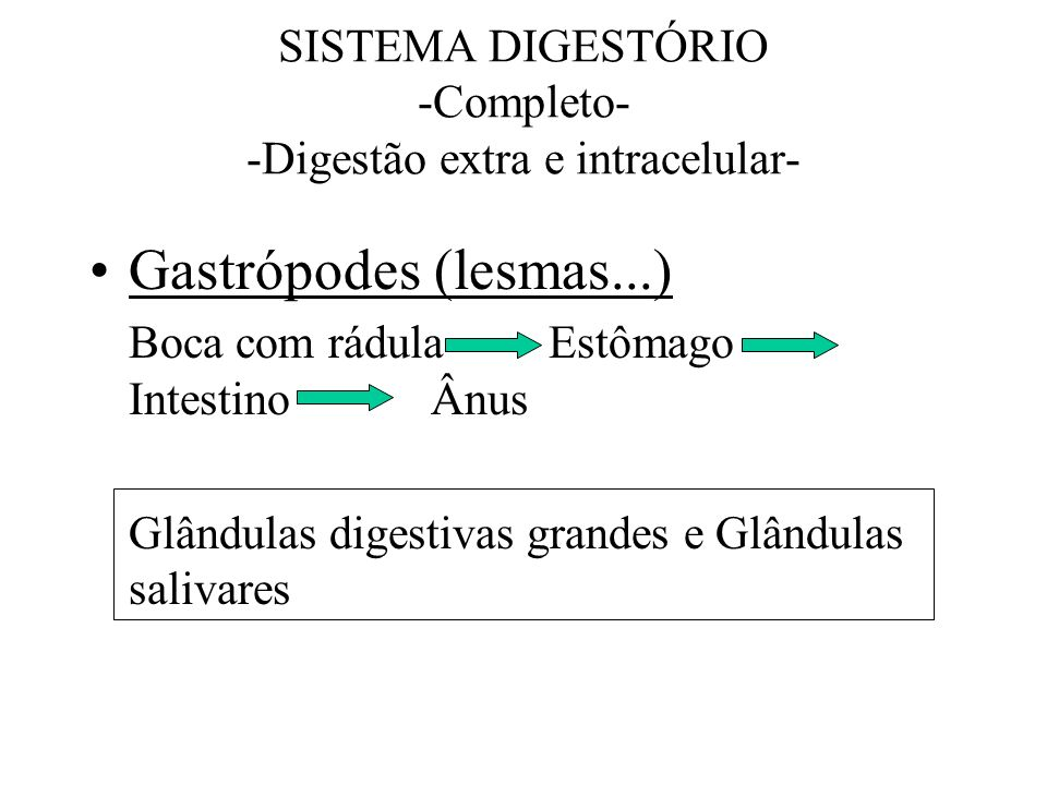 SISTEMA DIGESTÓRIO -Completo- -Digestão extra e intracelular-