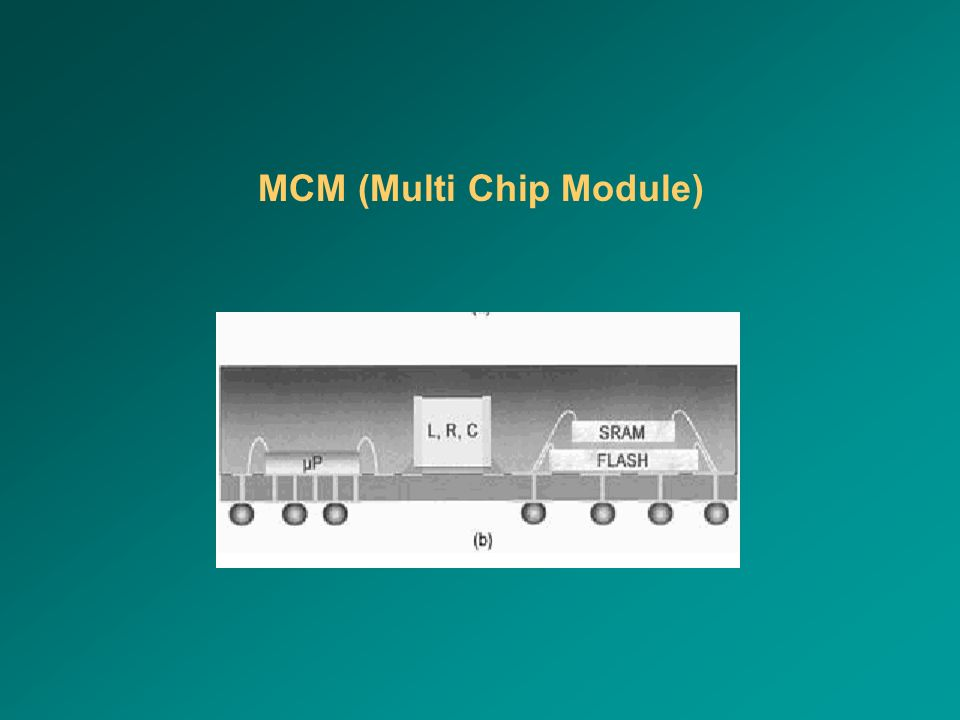 MCM (Multi Chip Module)