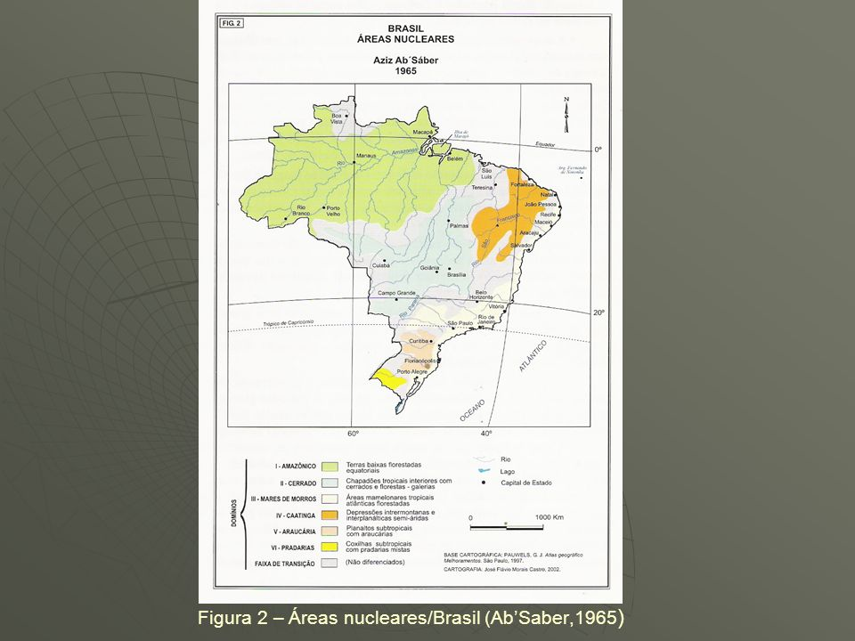 Figura 2 – Áreas nucleares/Brasil (Ab'Saber,1965)