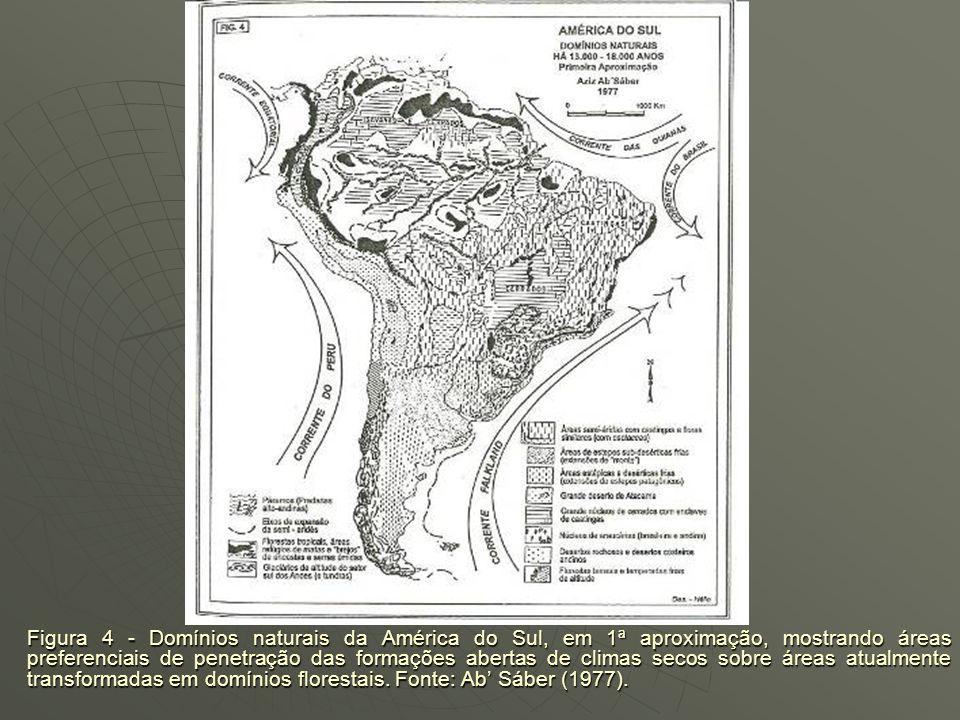 Figura 4 - Domínios naturais da América do Sul, em 1ª aproximação, mostrando áreas preferenciais de penetração das formações abertas de climas secos sobre áreas atualmente transformadas em domínios florestais.