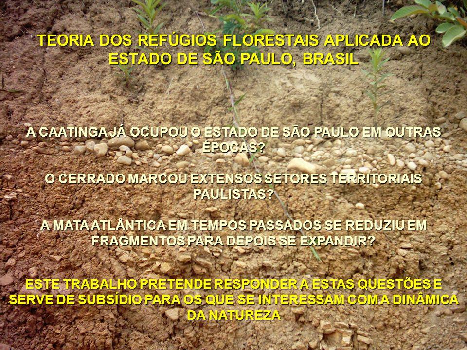 TEORIA DOS REFÚGIOS FLORESTAIS APLICADA AO ESTADO DE SÃO PAULO, BRASIL