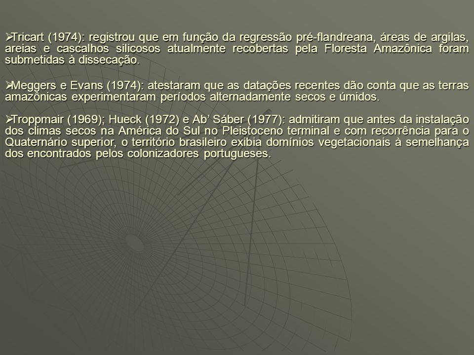 Tricart (1974): registrou que em função da regressão pré-flandreana, áreas de argilas, areias e cascalhos silicosos atualmente recobertas pela Floresta Amazônica foram submetidas à dissecação.