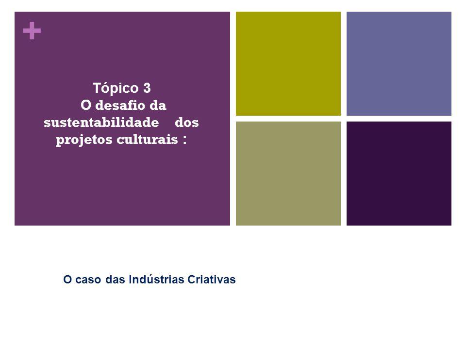 Tópico 3 O desafio da sustentabilidade dos projetos culturais :