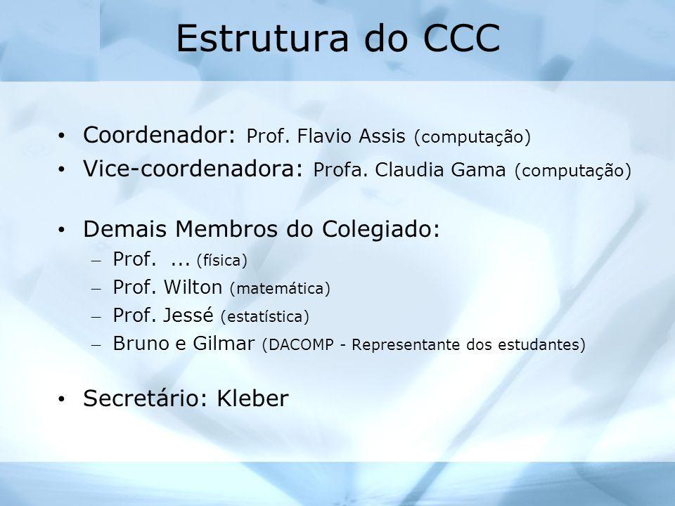 Estrutura do CCC Coordenador: Prof. Flavio Assis (computação)