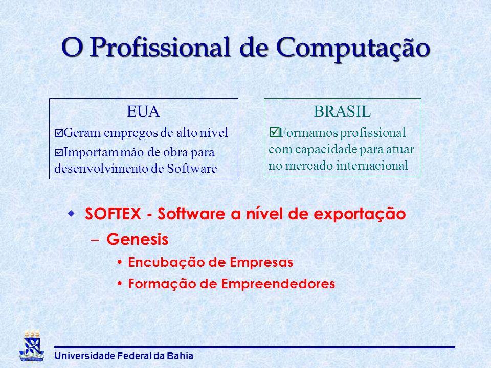 O Profissional de Computação