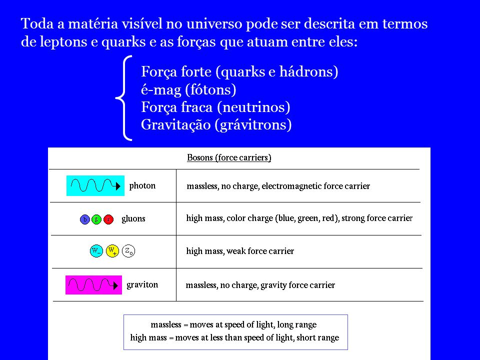 Toda a matéria visível no universo pode ser descrita em termos