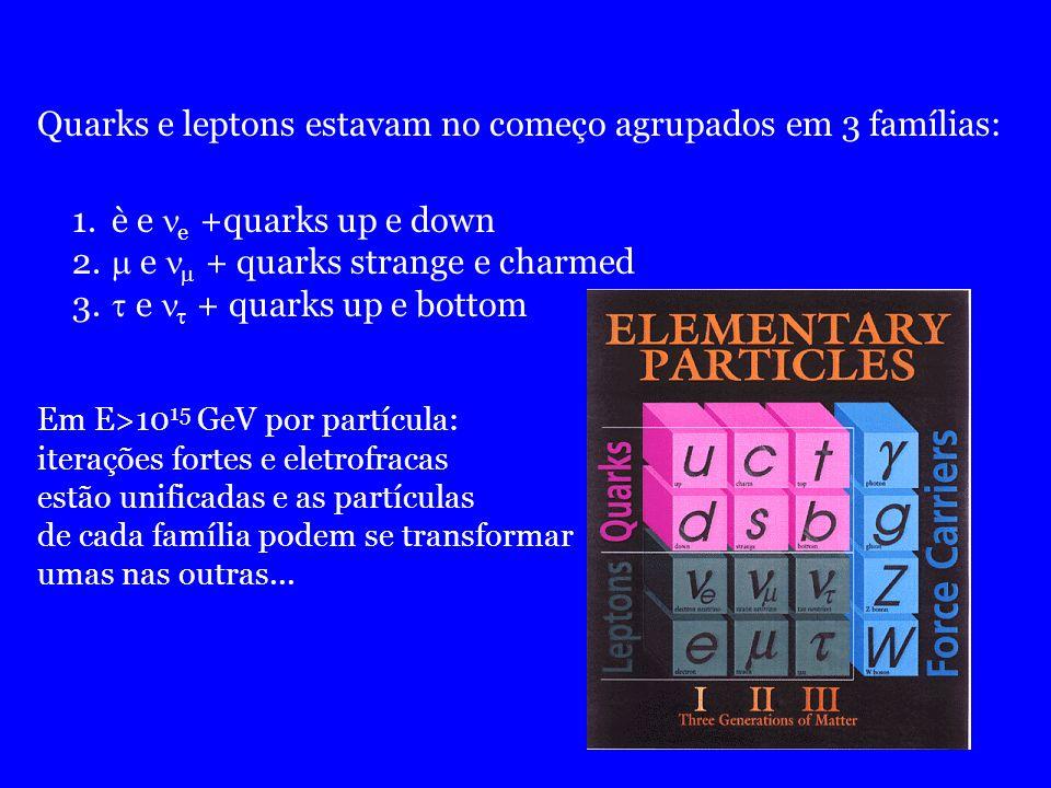 Quarks e leptons estavam no começo agrupados em 3 famílias: