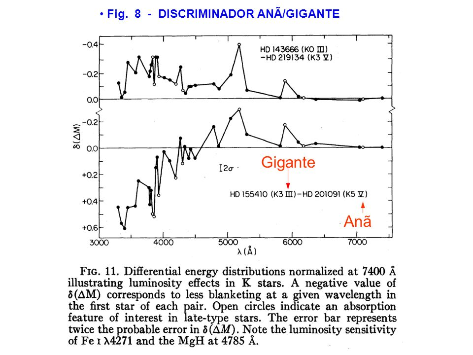 Fig. 8 - DISCRIMINADOR ANÃ/GIGANTE