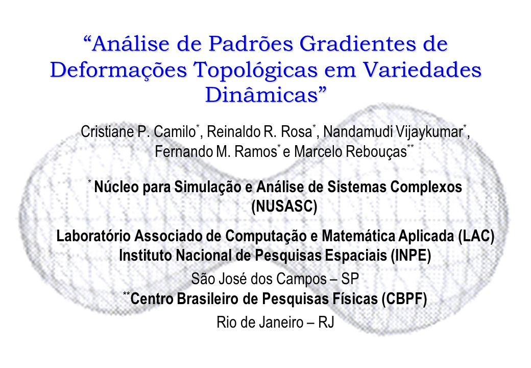 Análise de Padrões Gradientes de Deformações Topológicas em Variedades Dinâmicas
