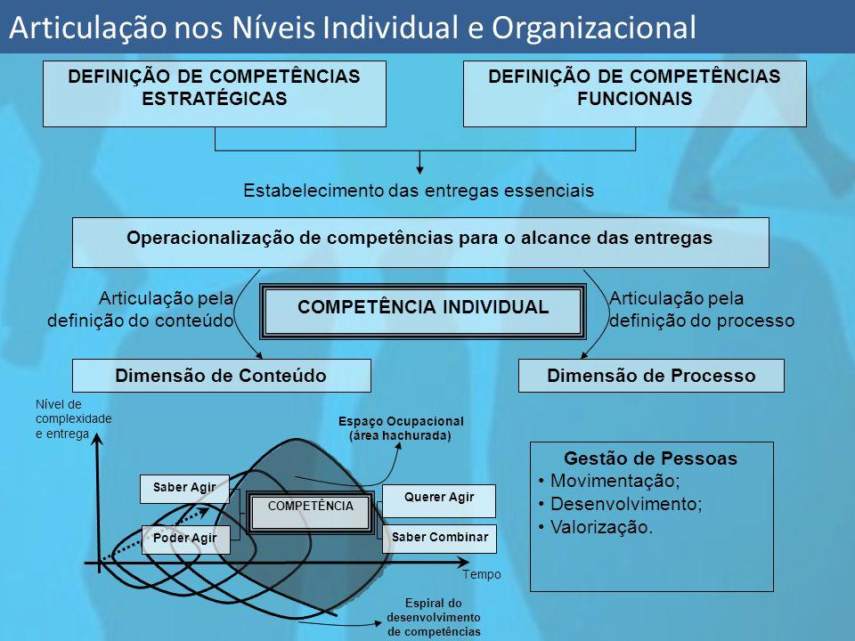 Articulação nos Níveis Individual e Organizacional