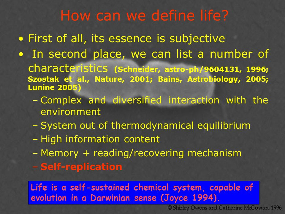 How can we define life First of all, its essence is subjective