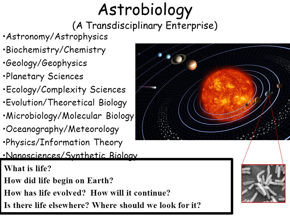 Astrobiology (A Transdisciplinary Enterprise)