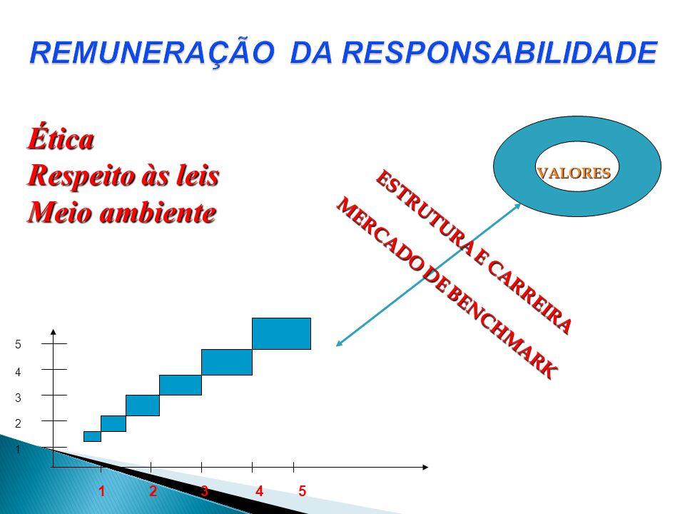 REMUNERAÇÃO DA RESPONSABILIDADE