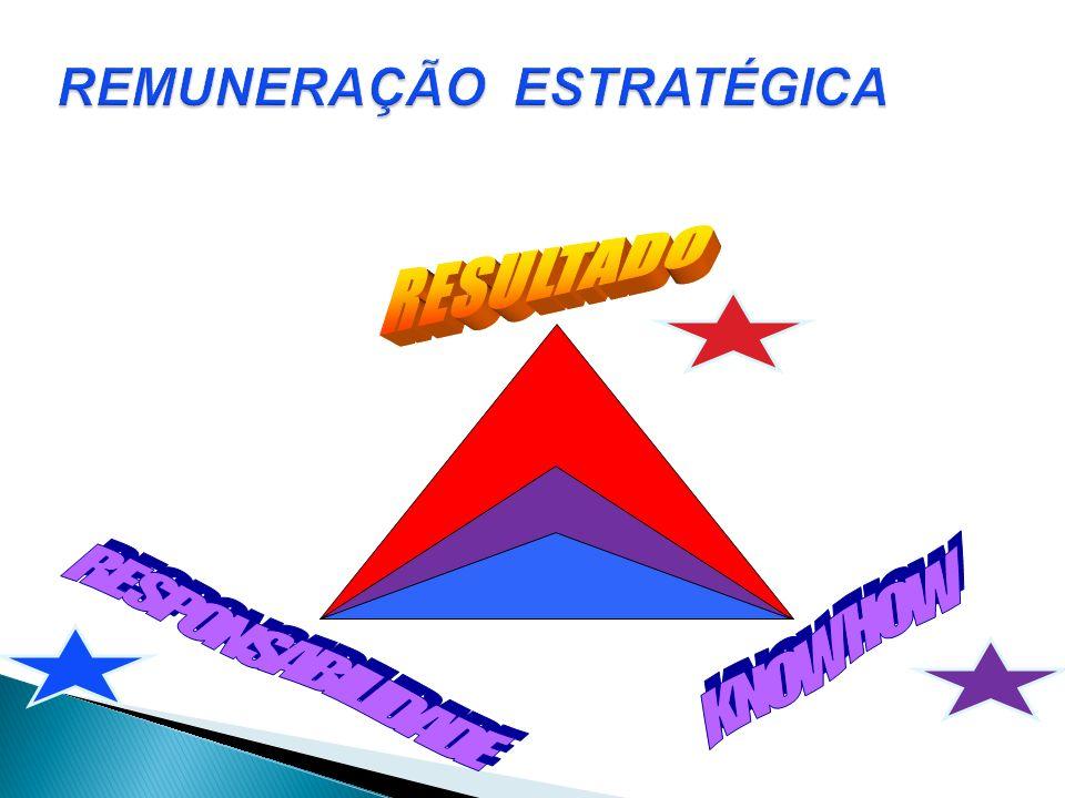 REMUNERAÇÃO ESTRATÉGICA