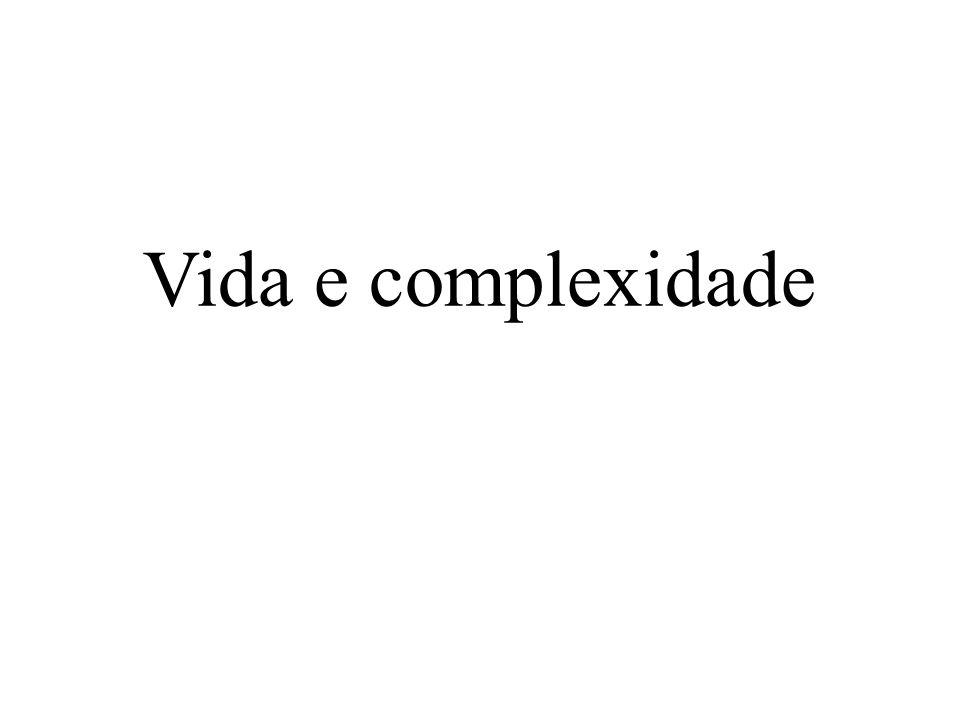 Vida e complexidade 2