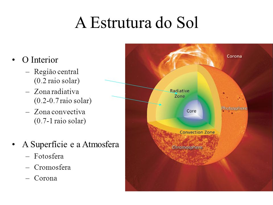A Estrutura do Sol O Interior A Superfície e a Atmosfera