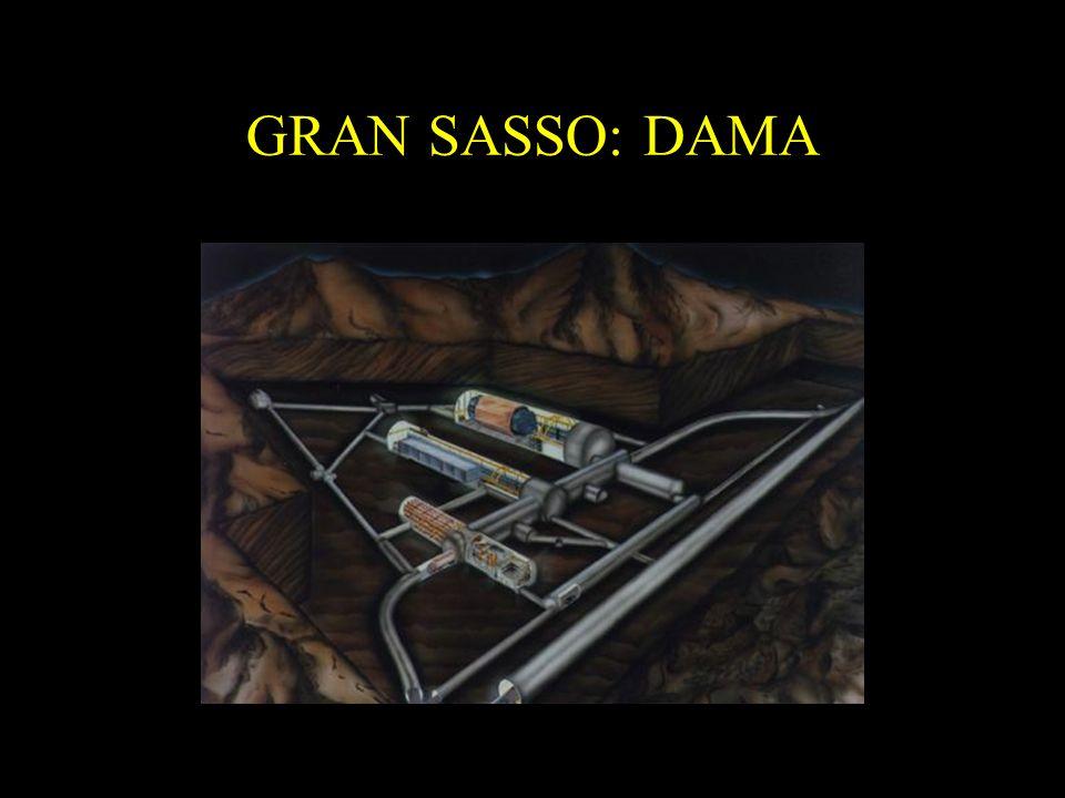 GRAN SASSO: DAMA