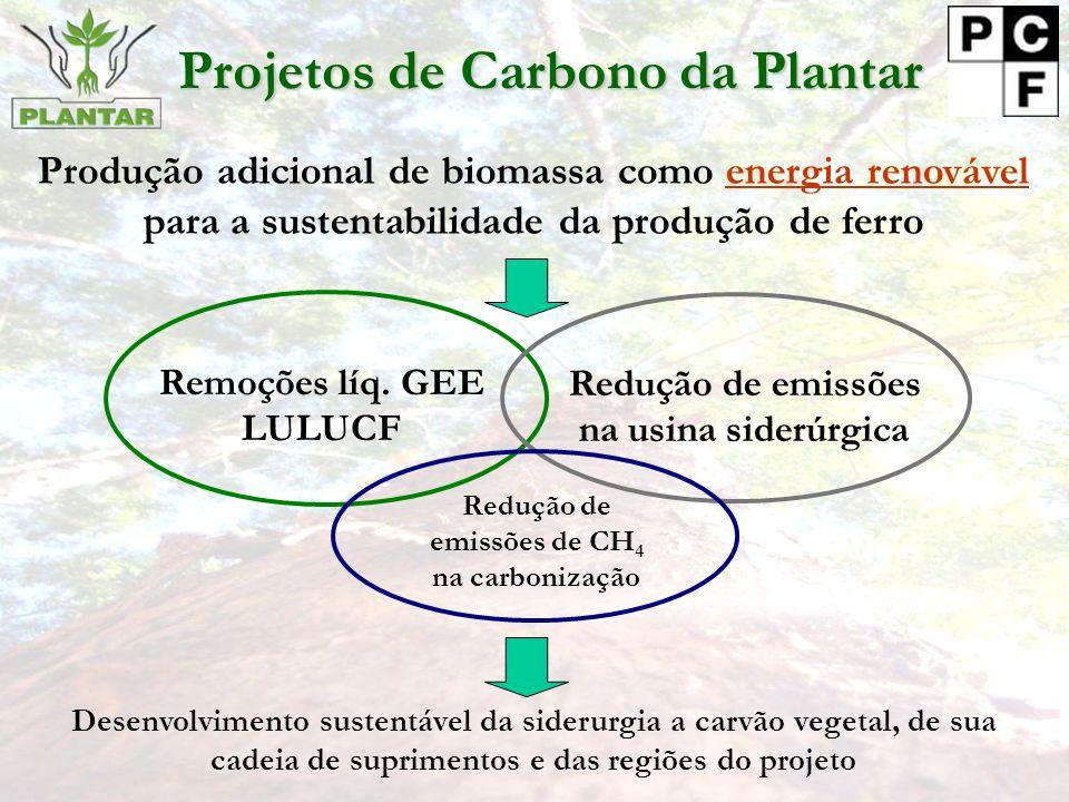 Projetos de Carbono da Plantar