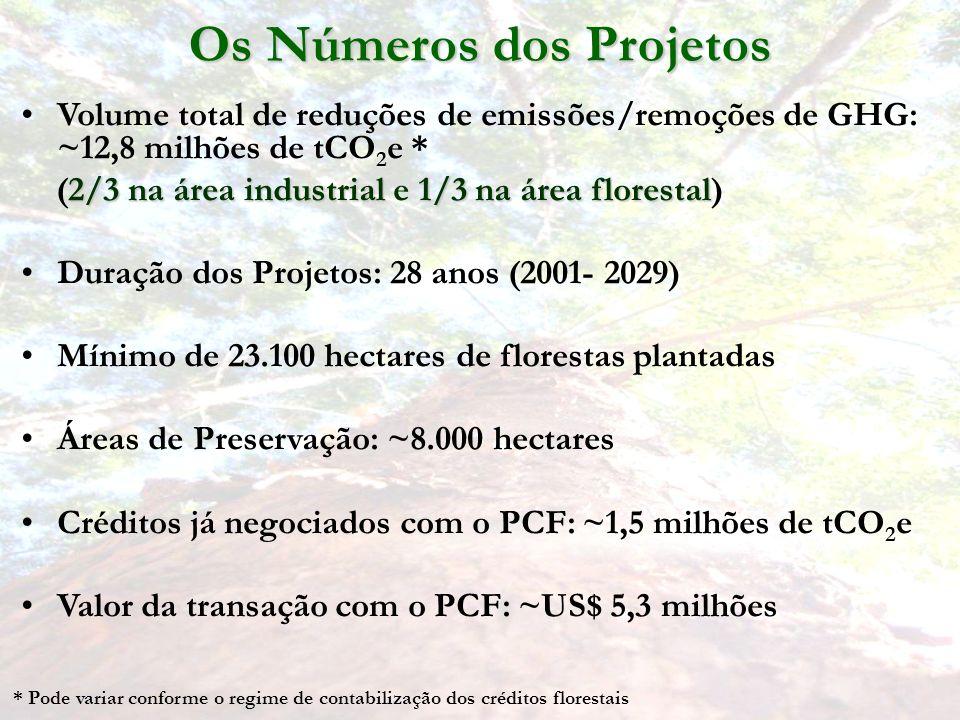 Os Números dos Projetos
