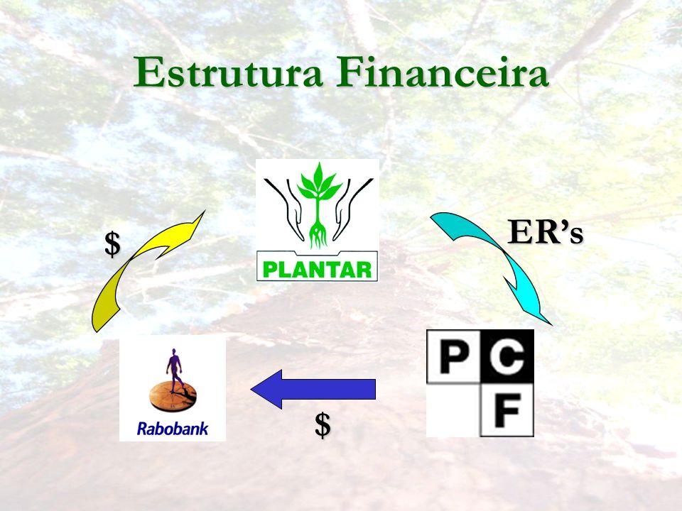 Estrutura Financeira ER's $