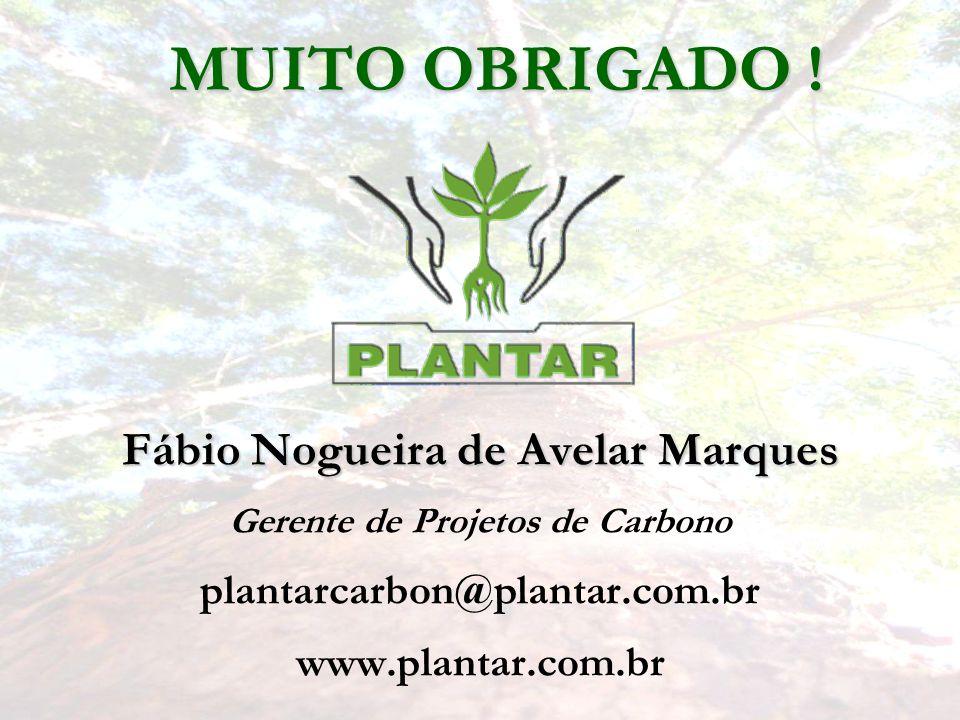 Fábio Nogueira de Avelar Marques Gerente de Projetos de Carbono