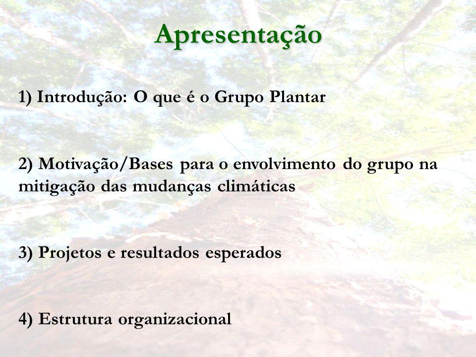 Apresentação 1) Introdução: O que é o Grupo Plantar
