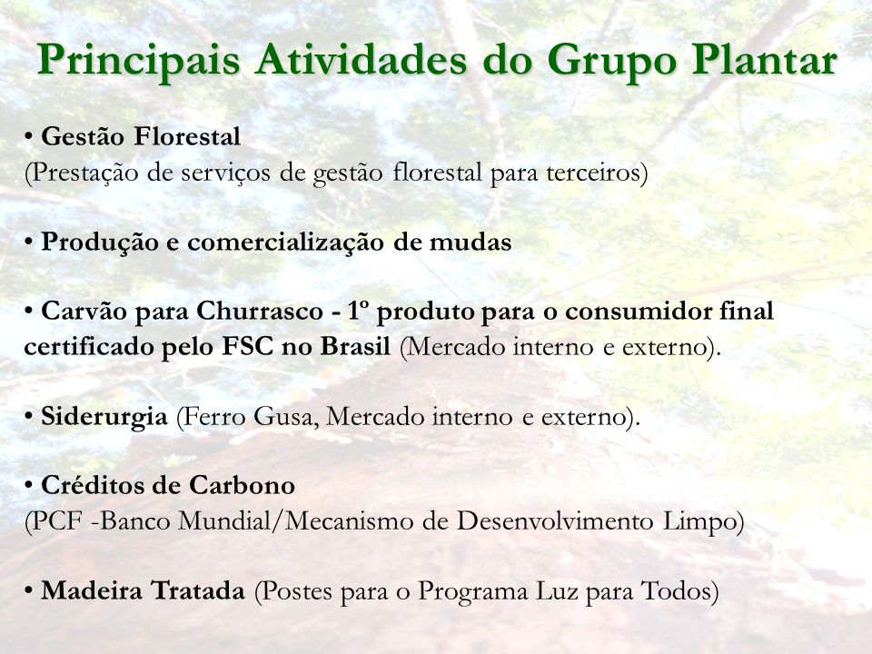 Principais Atividades do Grupo Plantar