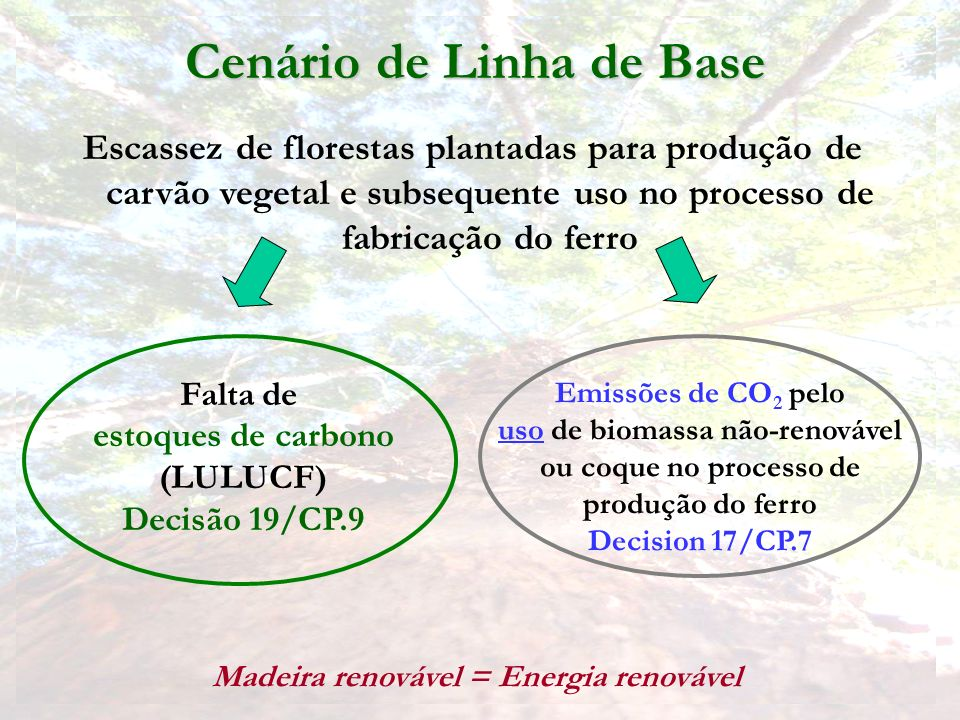 Cenário de Linha de Base Madeira renovável = Energia renovável