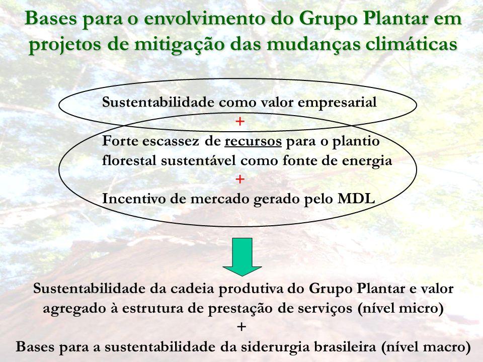 Bases para a sustentabilidade da siderurgia brasileira (nível macro)