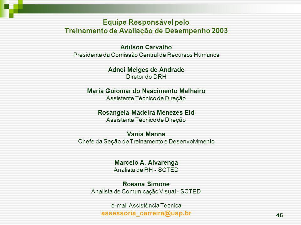 Equipe Responsável pelo Treinamento de Avaliação de Desempenho 2003