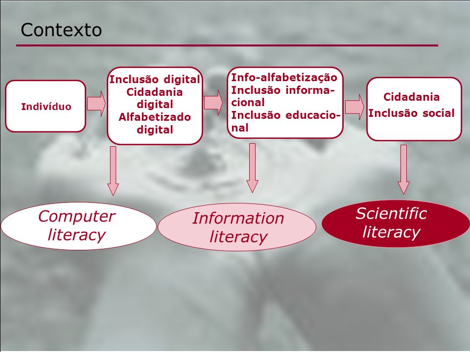 Contexto Scientific literacy Computer literacy Information literacy