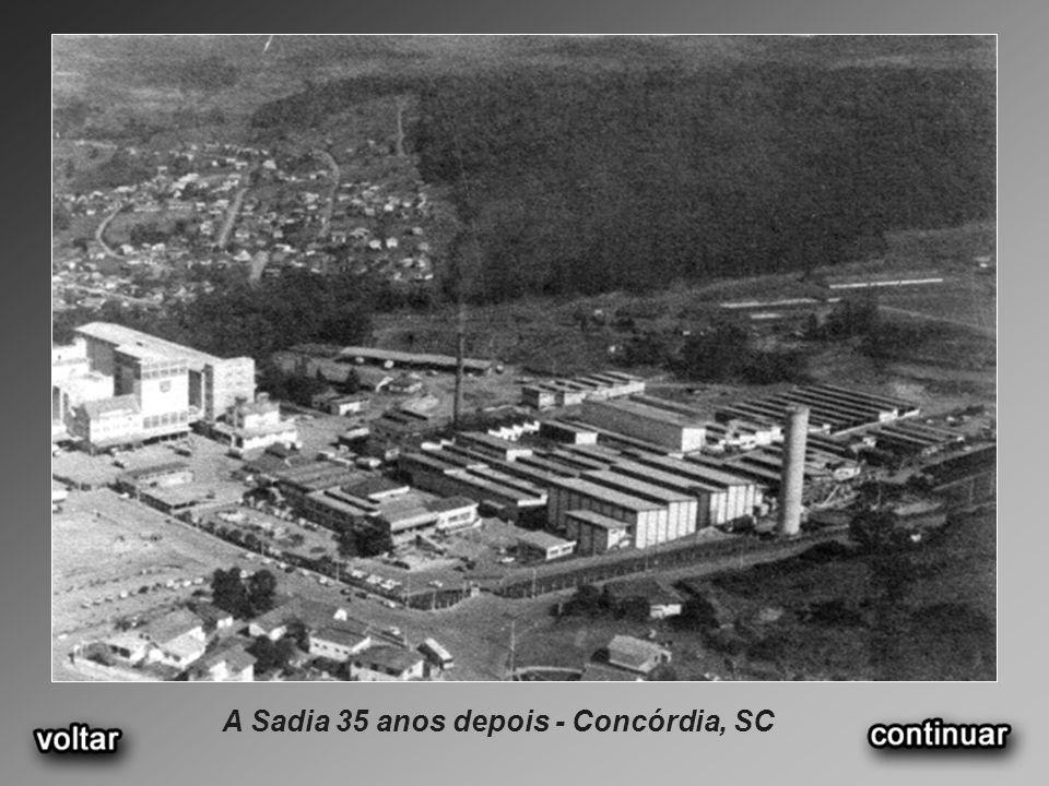 A Sadia 35 anos depois - Concórdia, SC
