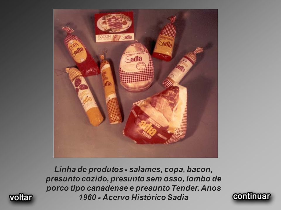 Linha de produtos - salames, copa, bacon, presunto cozido, presunto sem osso, lombo de porco tipo canadense e presunto Tender.