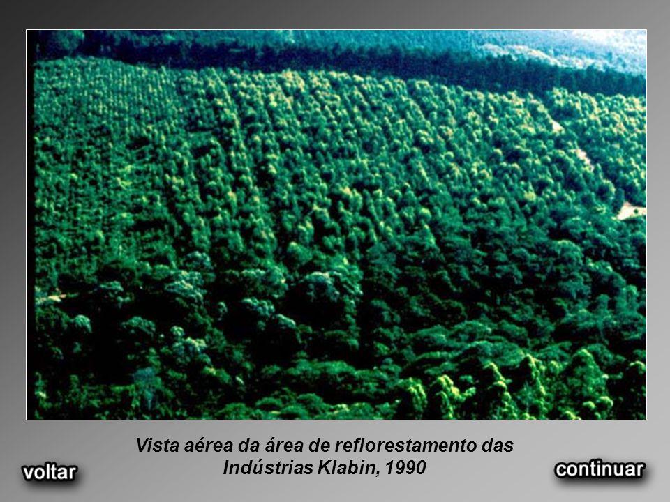 Vista aérea da área de reflorestamento das Indústrias Klabin, 1990