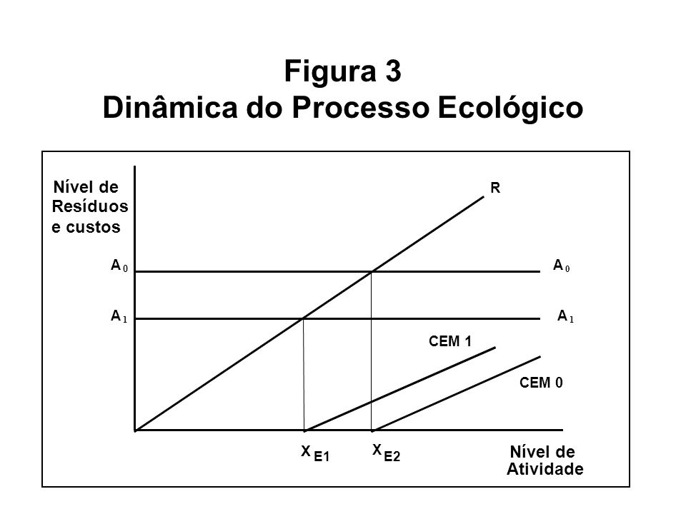 Figura 3 Dinâmica do Processo Ecológico