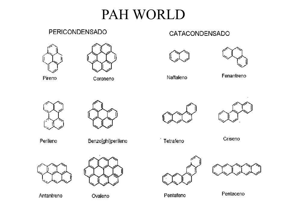 PAH WORLD