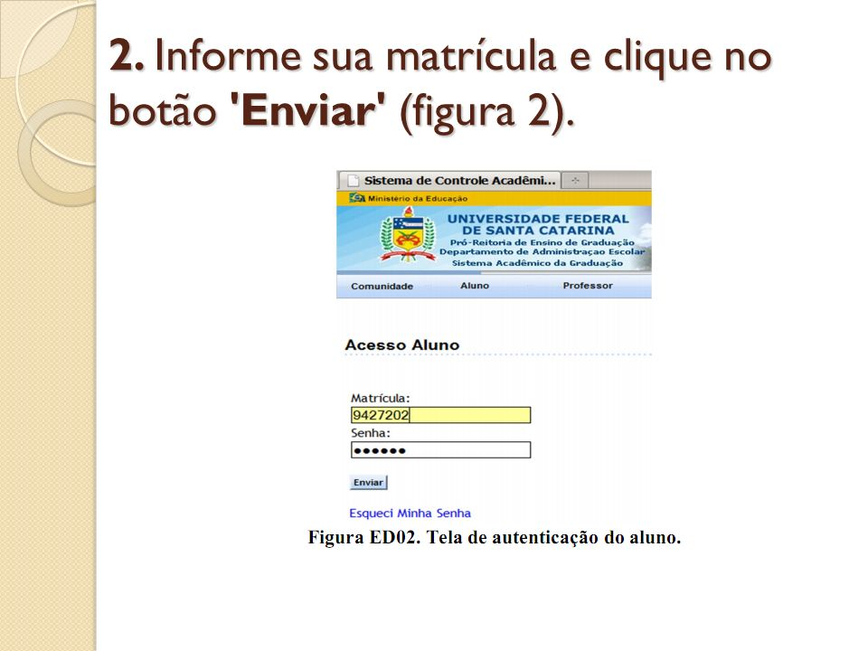 2. Informe sua matrícula e clique no botão Enviar (figura 2).