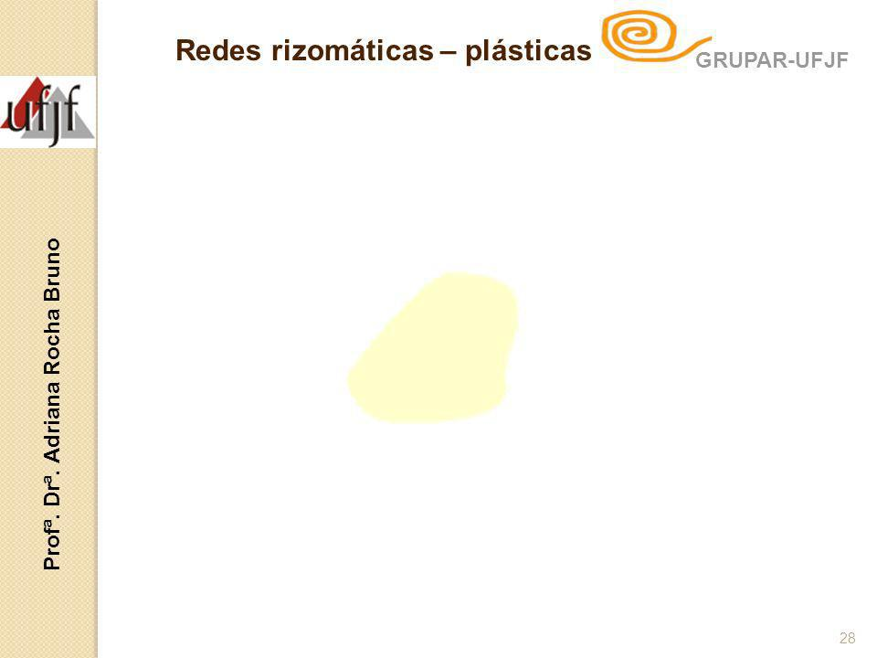 Redes rizomáticas – plásticas