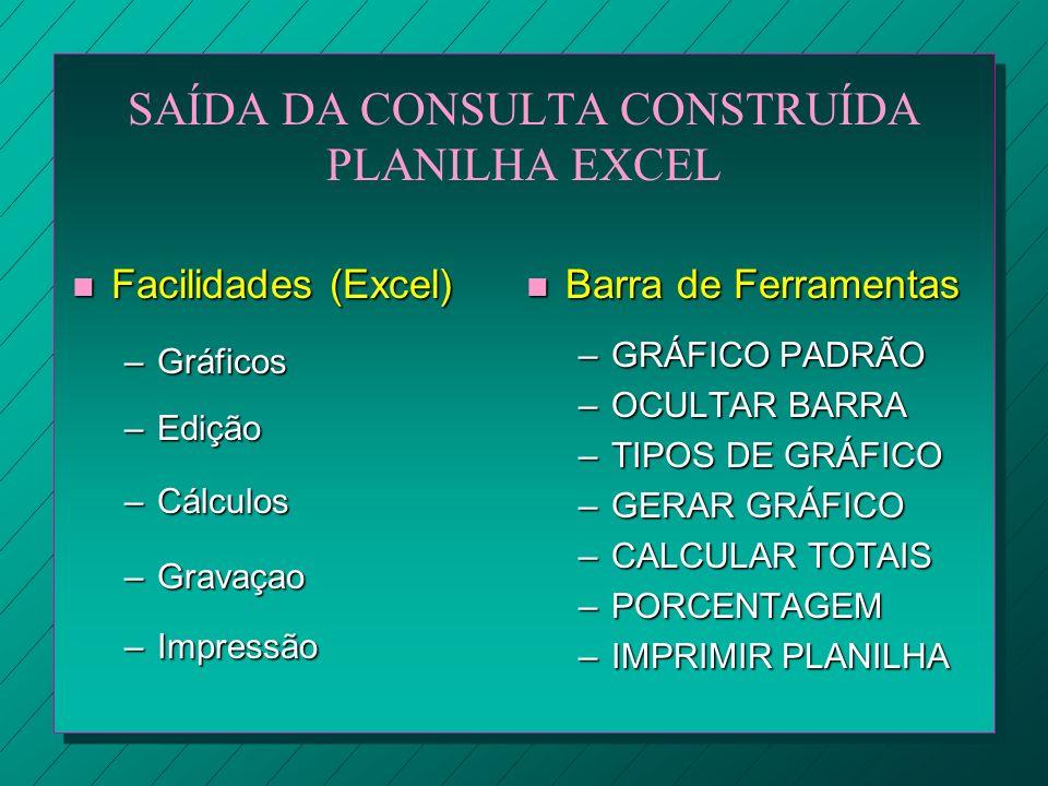SAÍDA DA CONSULTA CONSTRUÍDA PLANILHA EXCEL