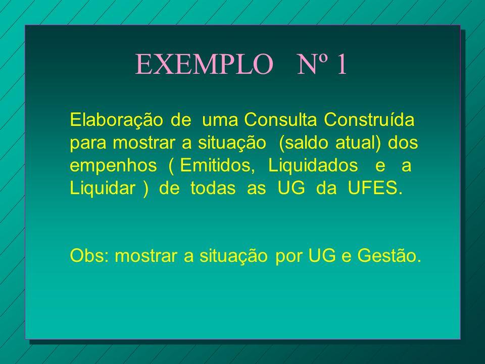 EXEMPLO Nº 1