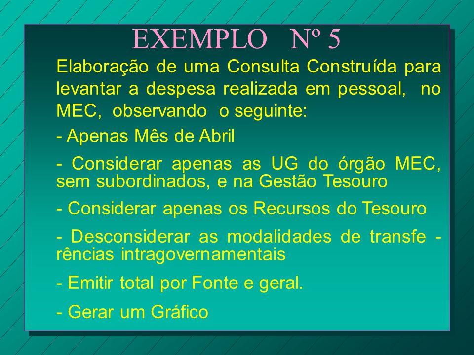 EXEMPLO Nº 5 Elaboração de uma Consulta Construída para levantar a despesa realizada em pessoal, no MEC, observando o seguinte: