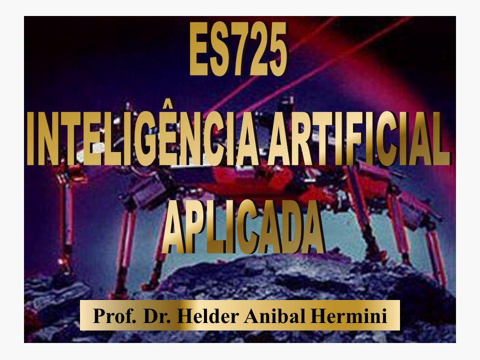 Prof. Dr. Helder Anibal Hermini