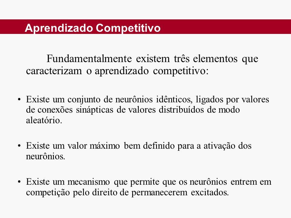 Aprendizado Competitivo