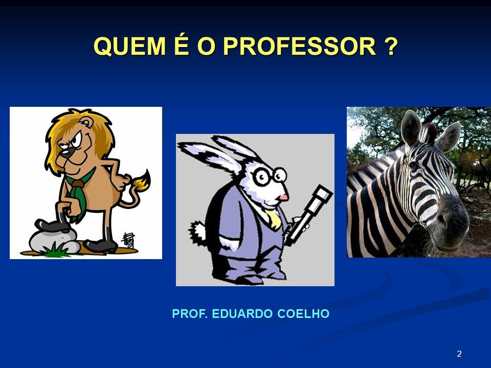QUEM É O PROFESSOR PROF. EDUARDO COELHO