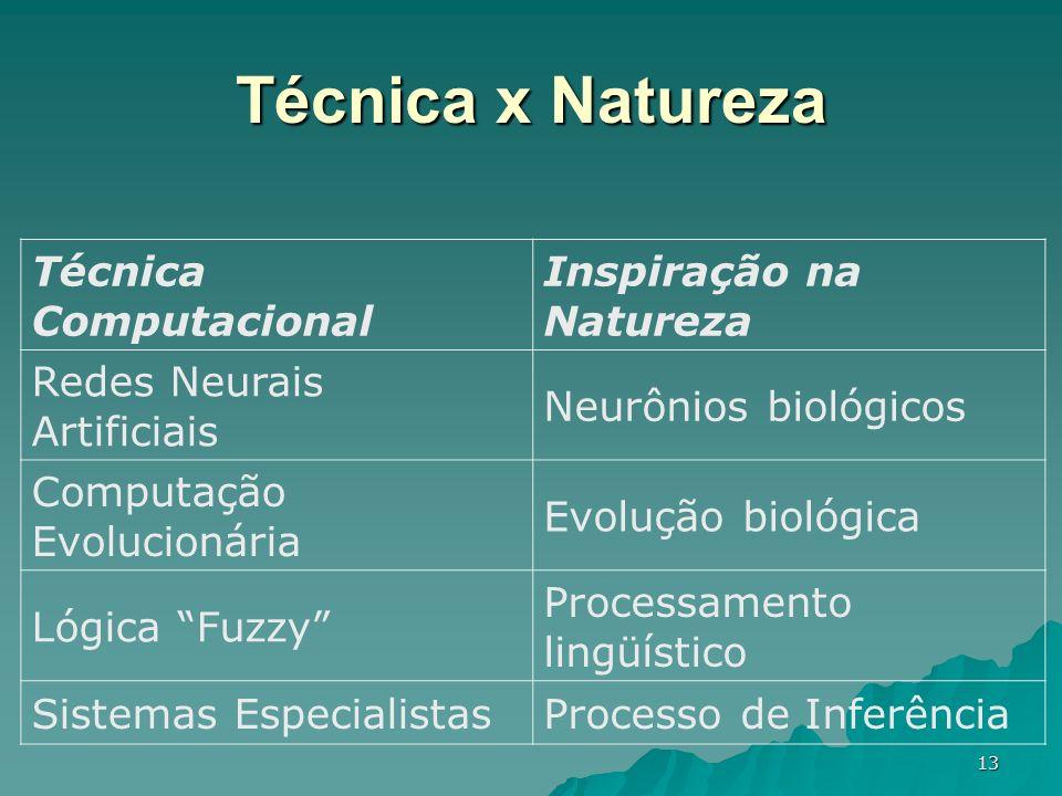 Técnica x Natureza Técnica Computacional Inspiração na Natureza