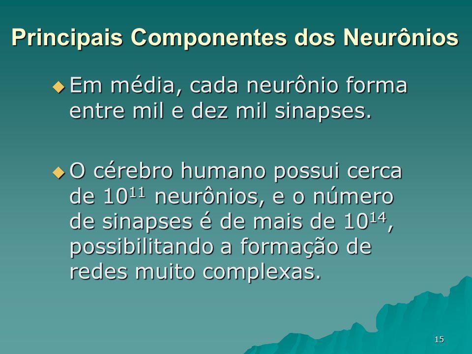 Principais Componentes dos Neurônios