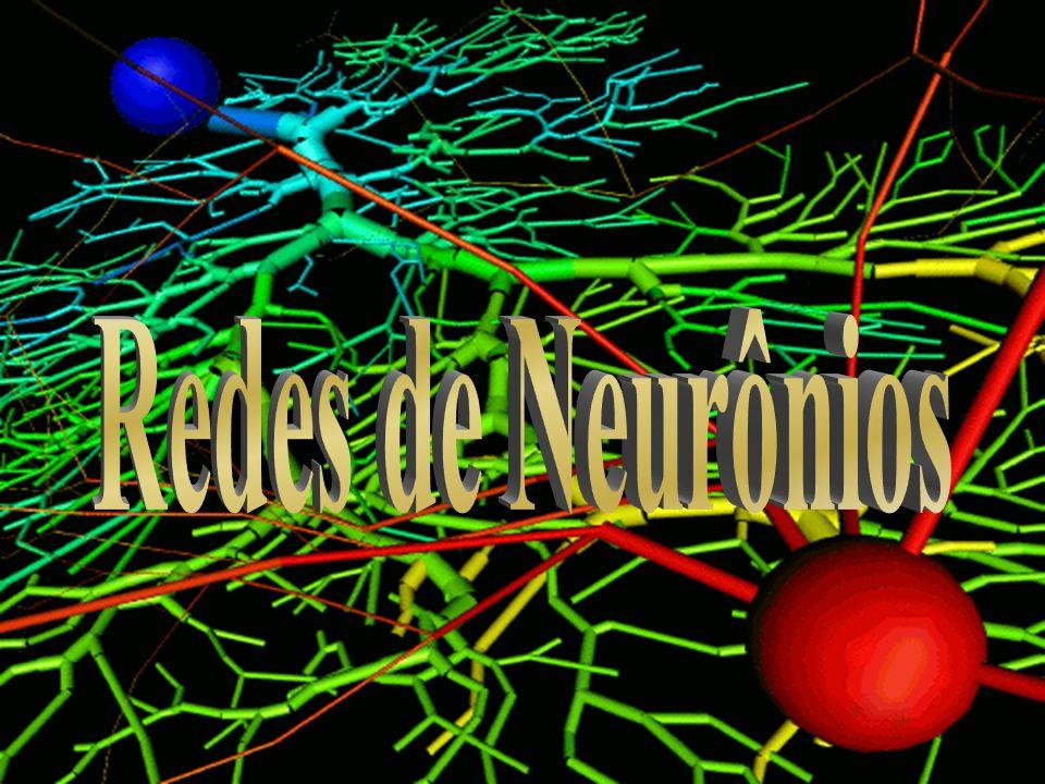 Redes de Neurônios