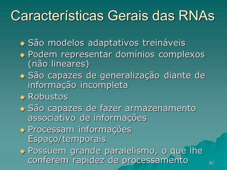 Características Gerais das RNAs
