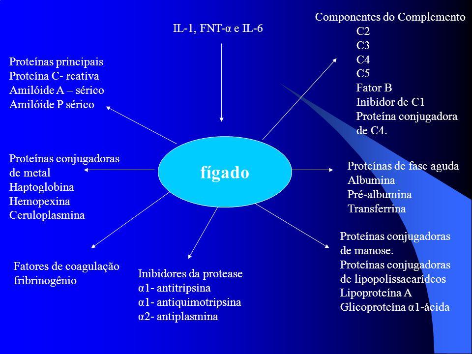 fígado Componentes do Complemento C2 IL-1, FNT-α e IL-6 C3 C4 C5