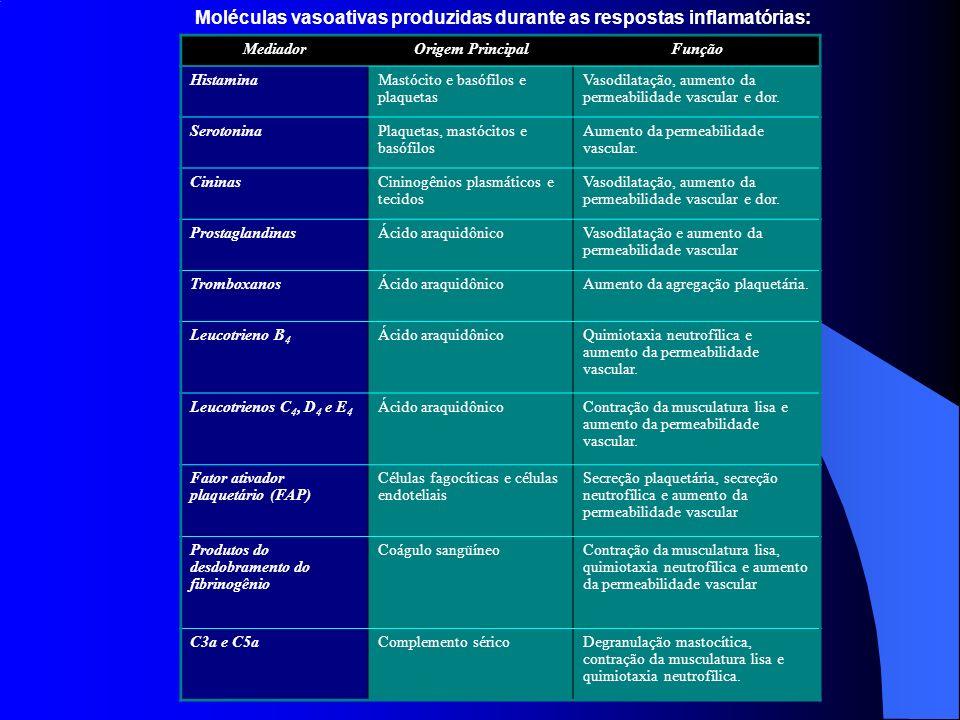Moléculas vasoativas produzidas durante as respostas inflamatórias: